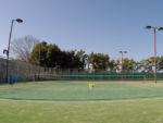 2020/03/12(木) ソフトテニス・個別練習会 個人レッスン