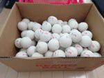 2021/04/14(水) ケンコーソフトテニスボール・10ダース
